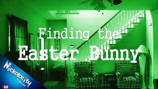Finding The Easter Bunny