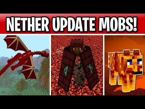 Minecraft 1.16 Nether Update Mobs? Red Dragon, Mob D & Nether Wolf!