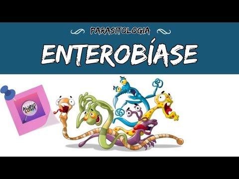 ENTEROBÍASE (OXIURÍASE) - PARASITOLOGIA #8