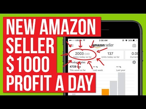 STUDENT MAKING OVER $1,000 PROFIT A DAY ON AMAZON! HOW HE DID IT!