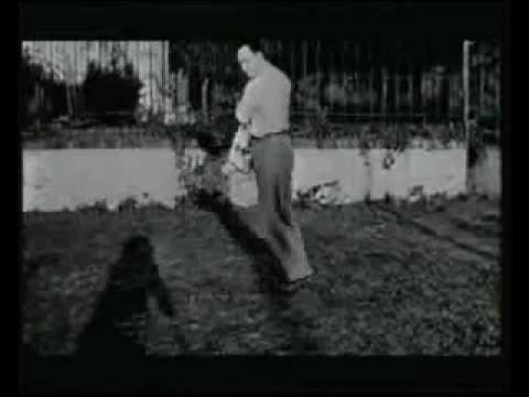 Camus & The French Resistance (Rare BBC Documentary)