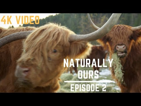 Sustainable Footprint at Ruckle Heritage Farm on Salt Spring Island : Naturally Ours Episode 2 in 4K