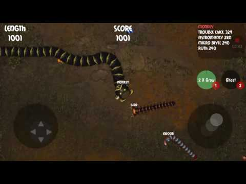 Biggest Snake At Insatiable.io !!!