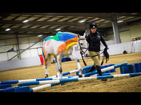 A Horses Inside Out Demonstration With Gillian Higgins
