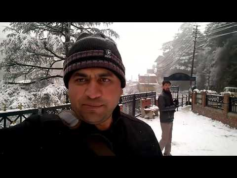Snowfall in Shimla, January 2019