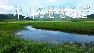 実際に里山に行って撮影した動画とサウンドです。 小川のせせらぎから始...