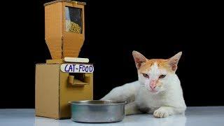 Haz Un Contenedor De Comida Para Gatos   ¡Es Fácil!   Inventos Caseros   Diy