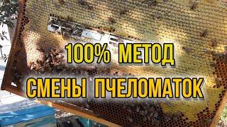 Изолятор Миленина 100 замена маток в основных семьях методика борьбы с клещом Варроа