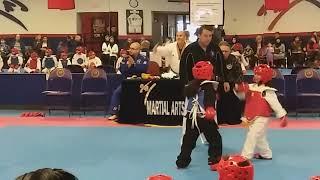 Taekwondo Michigan state