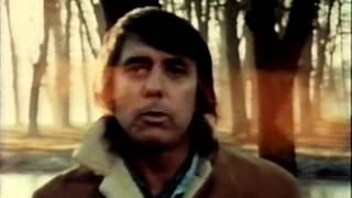 Lee Hazlewood - Stone Lost Child