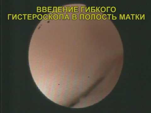 Прейскурант