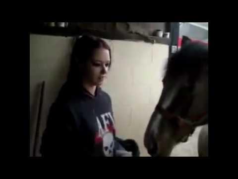 Pretty Women & Modern Farming Horse Mating Breeding Pairing Training Racing Bathing Insemination thumbnail