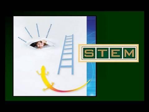 STEM Webcast 04/29/10
