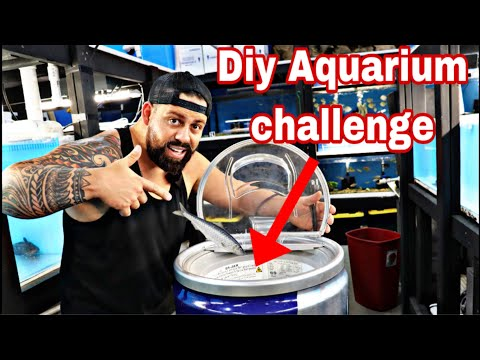 AQUARIUM CHALLENGE INVENTION I MADE A REDBULL FISH TANK! *$100 STORE CREDIT* Can You Beat The Neck?!