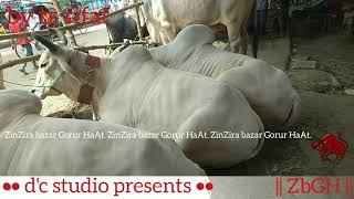 029 | Eid ul Azha 2018 | Sibbi Bulls | Traditional Noyabazar Haat | Old Dhaka | ZbGH 2019