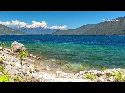 Relaxing Music and Lake Sounds for Yoga, Study, Meditation l Sen Vàng VTV