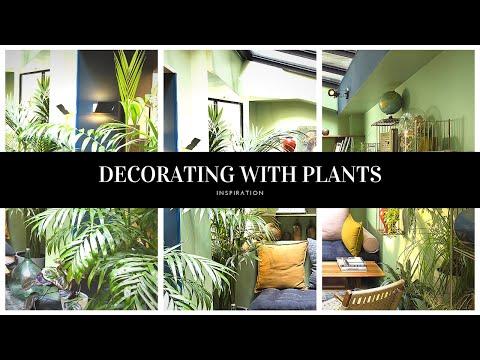 🌱Urban Jungle Home House Plant Decor Ideas  2019  / Interior Design