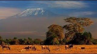 Страны восточной Африки. География 7 класс