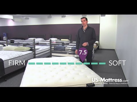 spring-air-back-supporter-value-wilshire-euro-top-mattress