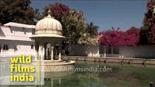 Pond inside Taj Lake Palace, Rajasthan