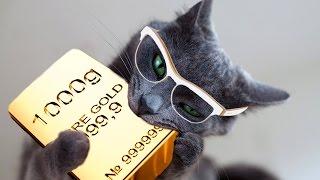 Выгодно ли хранить деньги в золоте?