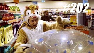 #202: Hamsteren in een Supermarkt [OPDRACHT]
