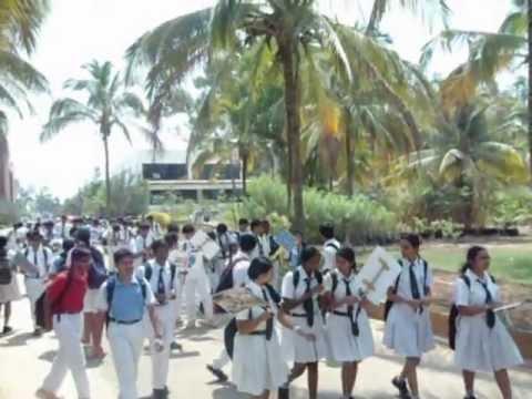 top 10 best schools in Bangalore - YouTube