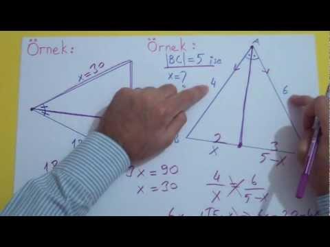 Açıortay Şenol Hoca Matematik