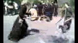 Gränsland - Sköldmö vs Soldat