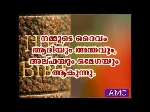 Daily bread/ AMC/ Vol.3