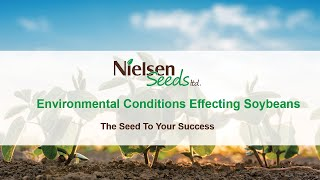 Environmental conditions that affected 2018 soybeans