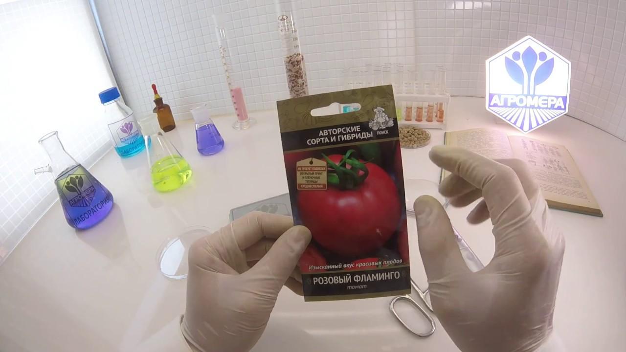 В сезоне 2017-значительно расширился ассортимент новинками, и вы сможете выбрать и купить семена томатов, огурцов, перцев, дынь, арбузов и.