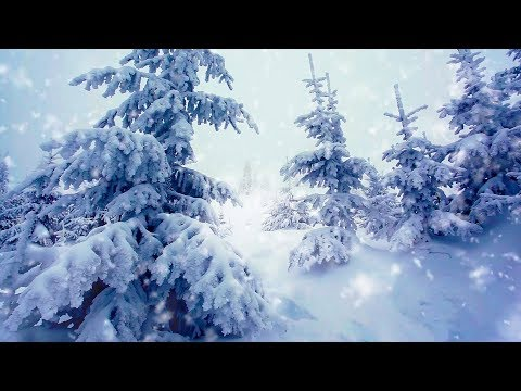 Winter Storm White Noise | Sleep, Study or Focus with Wind & Snowstorm Sounds | 10 Hours