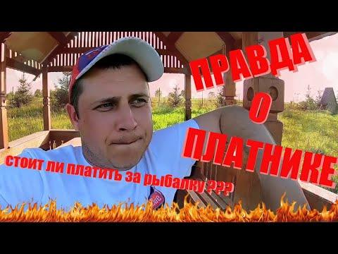 Рыбалка на платниках Калужской и Московской области.Как и на что ловить карпа на платнике.Платник