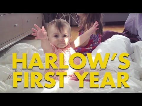 Harlow's First Year