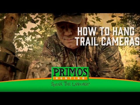 How To Hang Trail Cameras