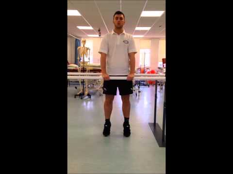 Treatment of Balance Disorders Physiotherapy James Sharp