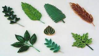 Episode 3 : Quilling Basic Shapes - Leaves