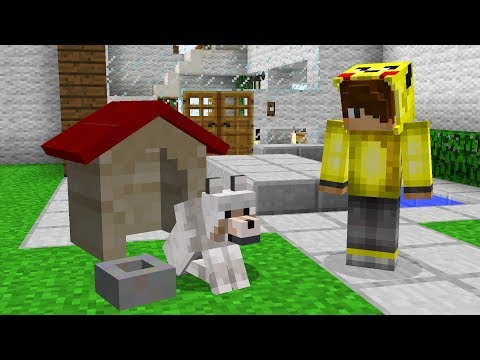 ISMETRG'NİN YENİ YAVRU KÖPEĞİ! 😱 - Minecraft