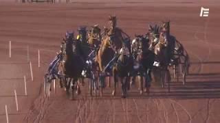 Vidéo de la course PMU PRIX DES TOURNESOLS