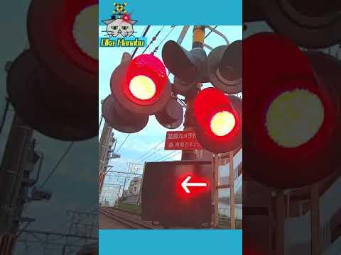 【踏切 電車】カンカン ふみきり Trains & Railroad crossings in Japan 東急東横線18