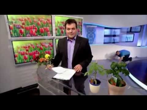 Hungarian TV Staffer Dives into Live Broadcast thumbnail