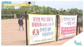 인천 최초로 반려동물 교실 운영_[2019.5.2주] 영상 썸네일