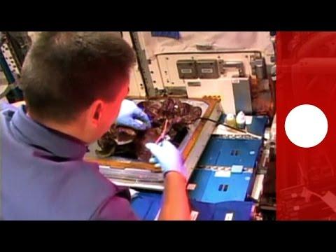 iss astronauten mit gr nem daumen salat aus dem weltall verzehrt youtube. Black Bedroom Furniture Sets. Home Design Ideas