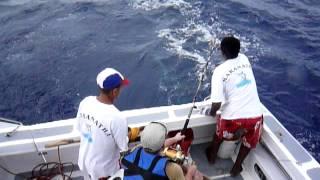 видео Рыбалка на Маврикии