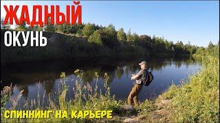 Ловля окуня на карьере Рыбалка на спиннинг