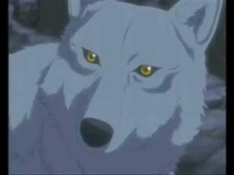 Волки.красивые картинки