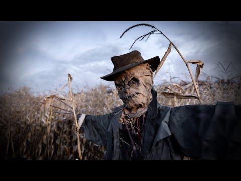3 Nightmarish Zoom Call Horror Stories Youtube Listen to music from mr. 3 nightmarish zoom call horror stories