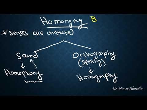 SEMANTICS-16: Sense Relations (Homonymy vs Polysemy)