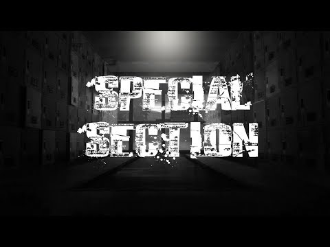 Special Section ( A Grade 9 Movie ) (ALTERNATIVE ENDING)